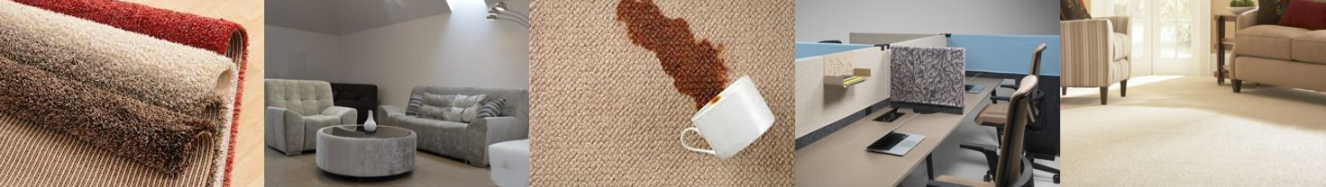 Furniture, carpets cleaners
